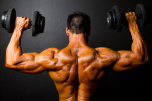 Building-and-Repairing-Your-Muscles